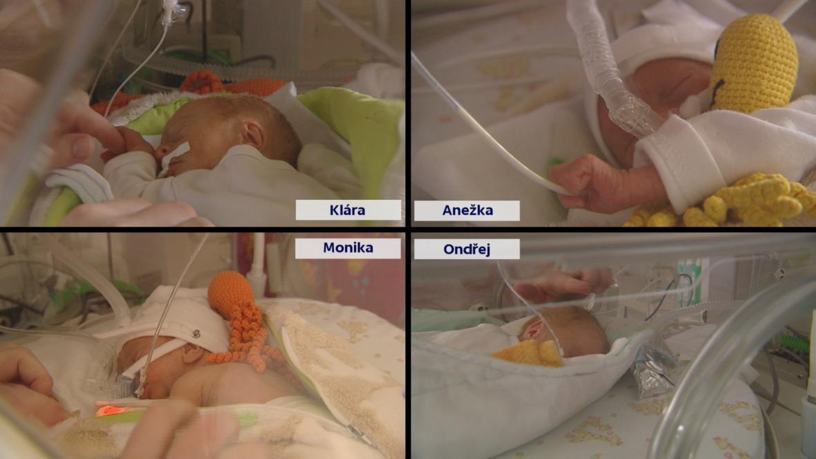 V Česku se po patnácti letech narodila čtyřčata