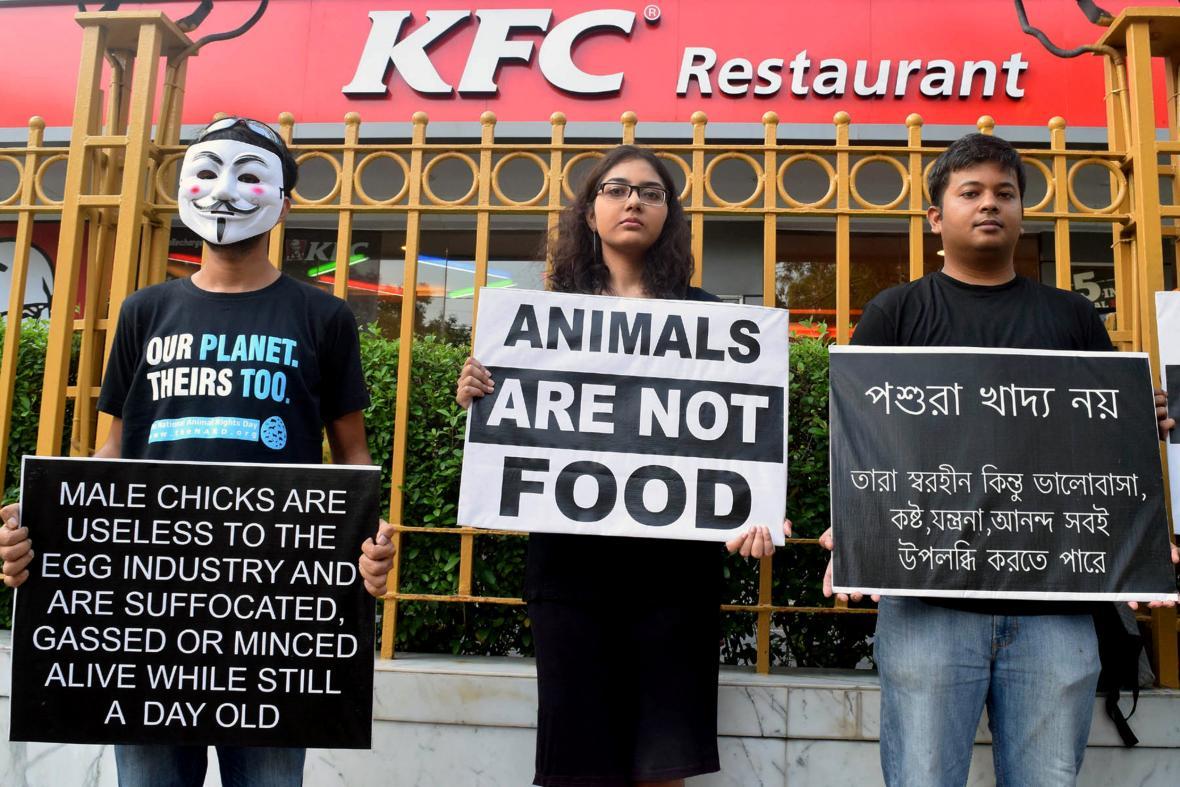 Veganská kampaň v indické Kalkatě