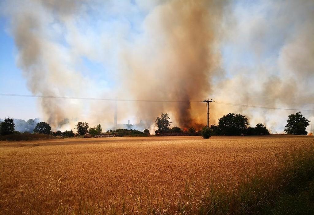 Požár mezi Ústím nad Labem a Lovosicemi