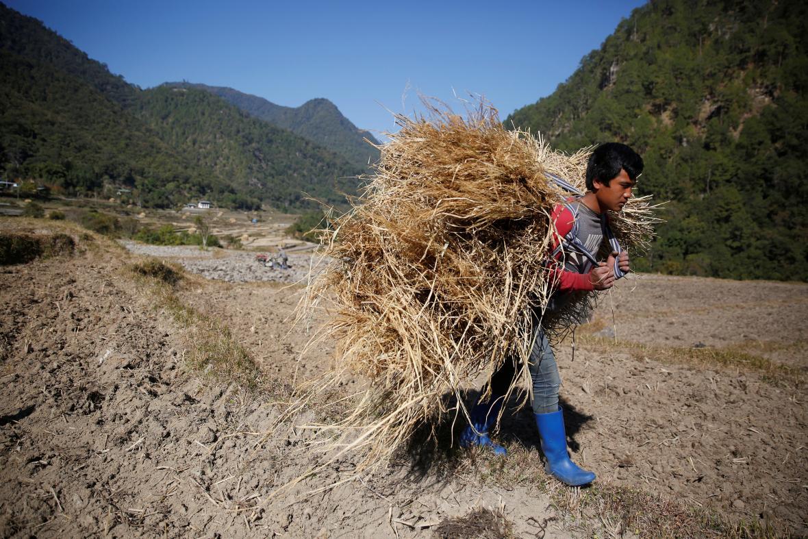 Bhútánci jsou rození zemědělci