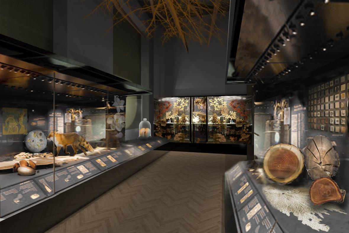 Expozice Národního muzea: Evoluce
