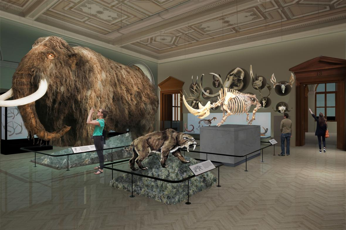 Expozice Národního muzea: Příroda
