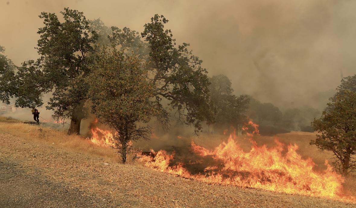 Lesní požáry se kvůli suchu a vedru rychle šíří