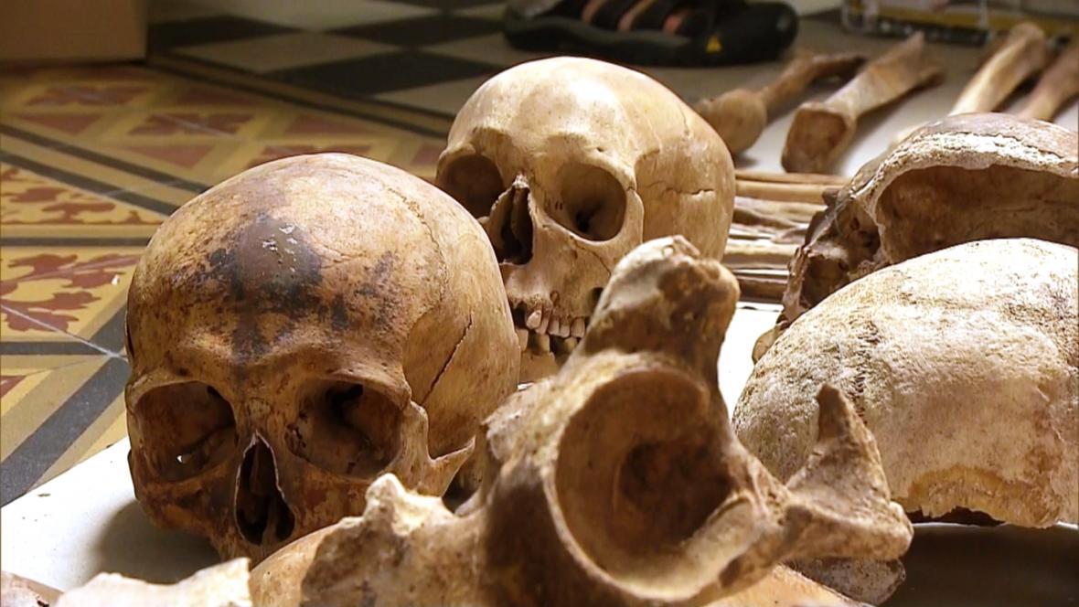 Ostatky Přemyslovců z olomoucké kaple svatého Štěpána v Klášterním Hradisku