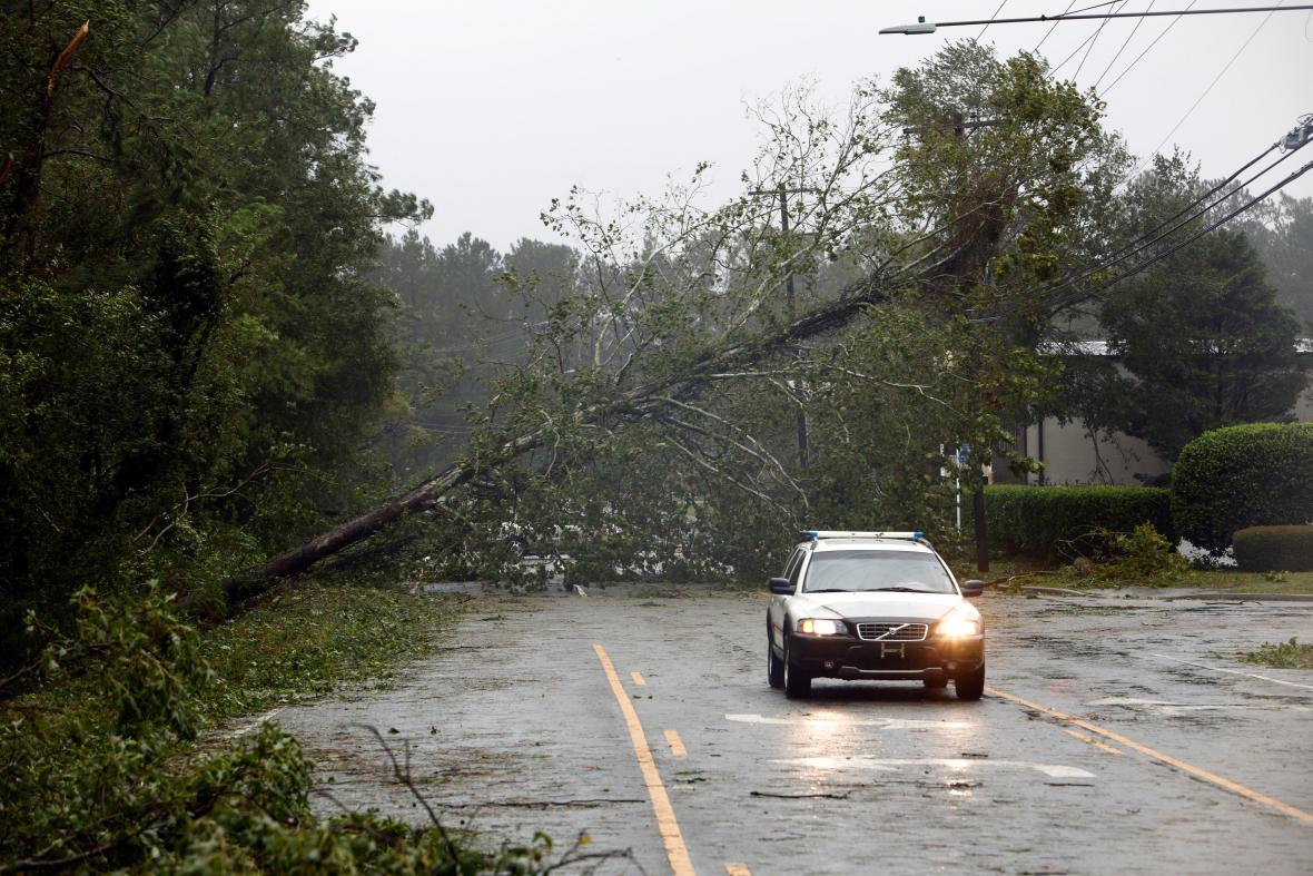 Ve Wilmingtonu už padají stromy