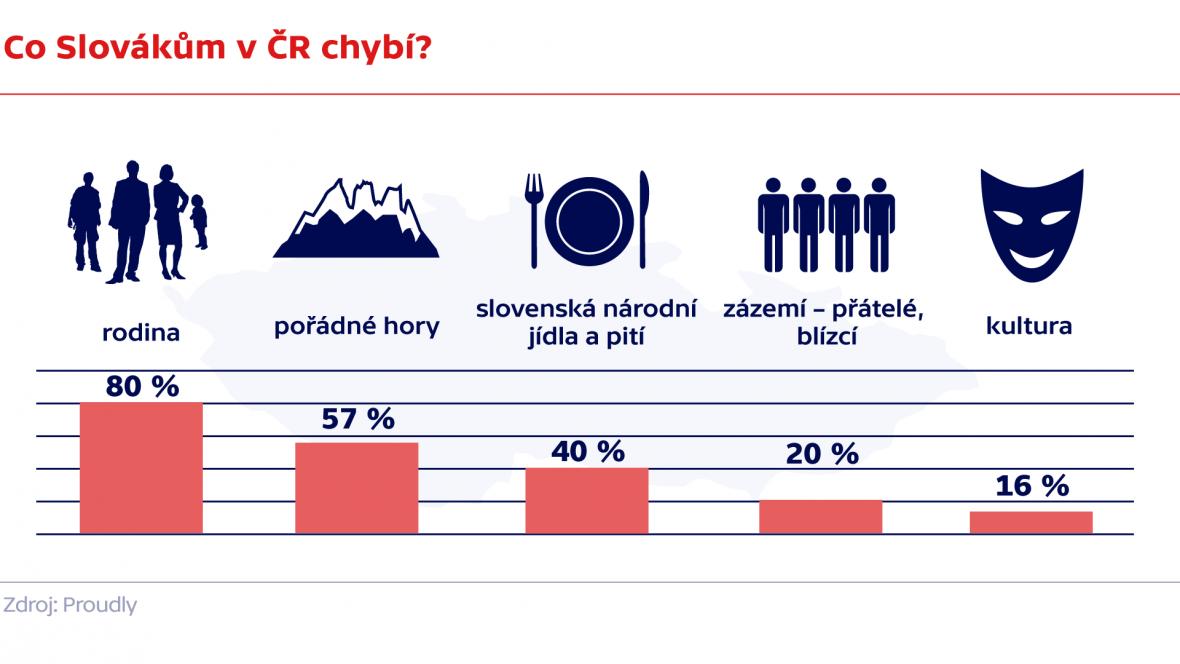 Co Slovákům v ČR chybí