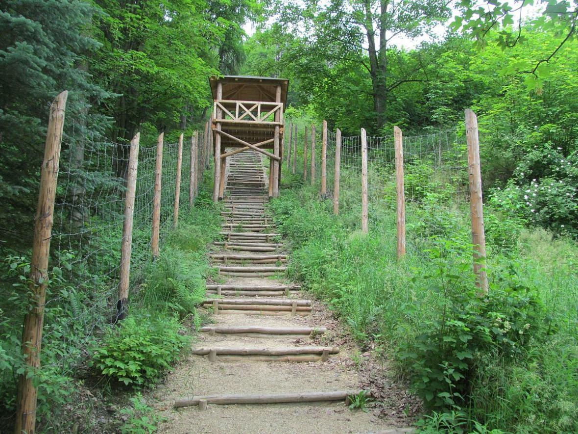 Schody a dozorčí věž u dolu Svornost. Zbytky pracovního tábora nyní slouží jako expozice pro návštěvníky. Přilehlý důl Svornost je stále v provozu.