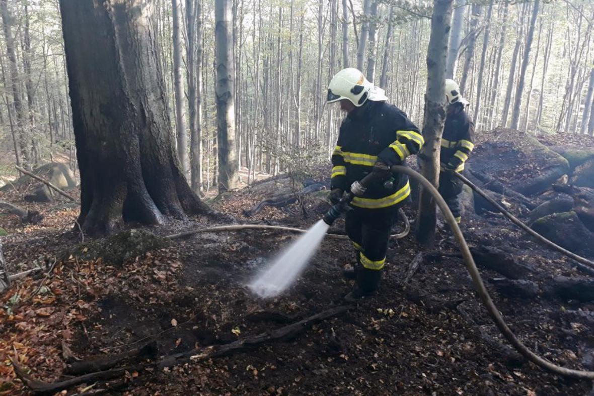 Požár lesa u Raspenavy