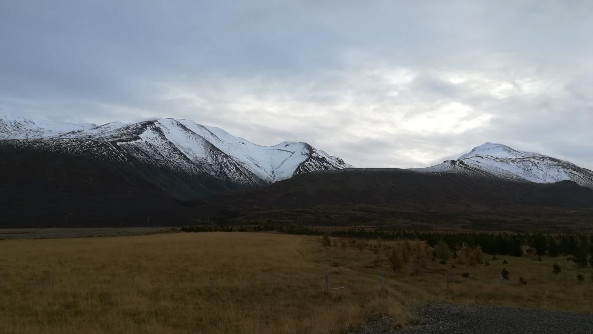 Island znovu zalesňuje