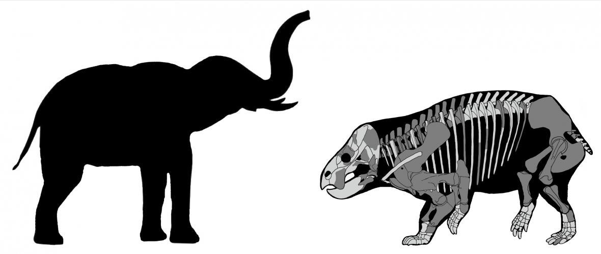 Vědci popsali obřího souputníka dinosaurů
