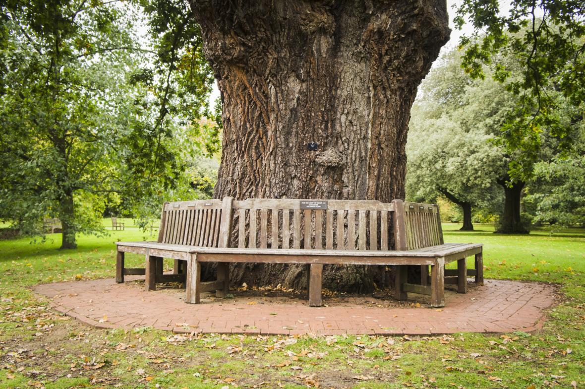 Zahradní lavička se štítkem na památku posádky letu PanAm103 v Kew Gardens v Londýně