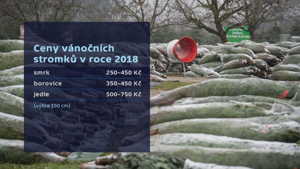 Ceny vánočních stromků v roce 2018