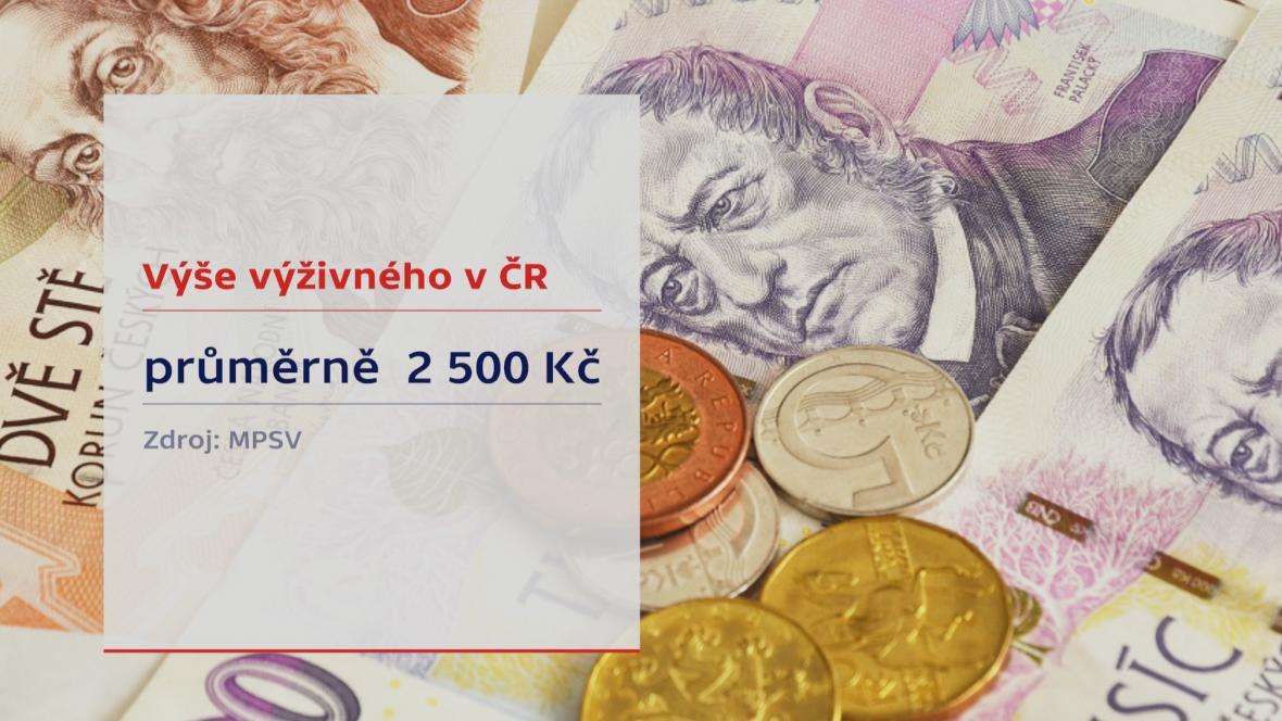 Výše výživného v ČR