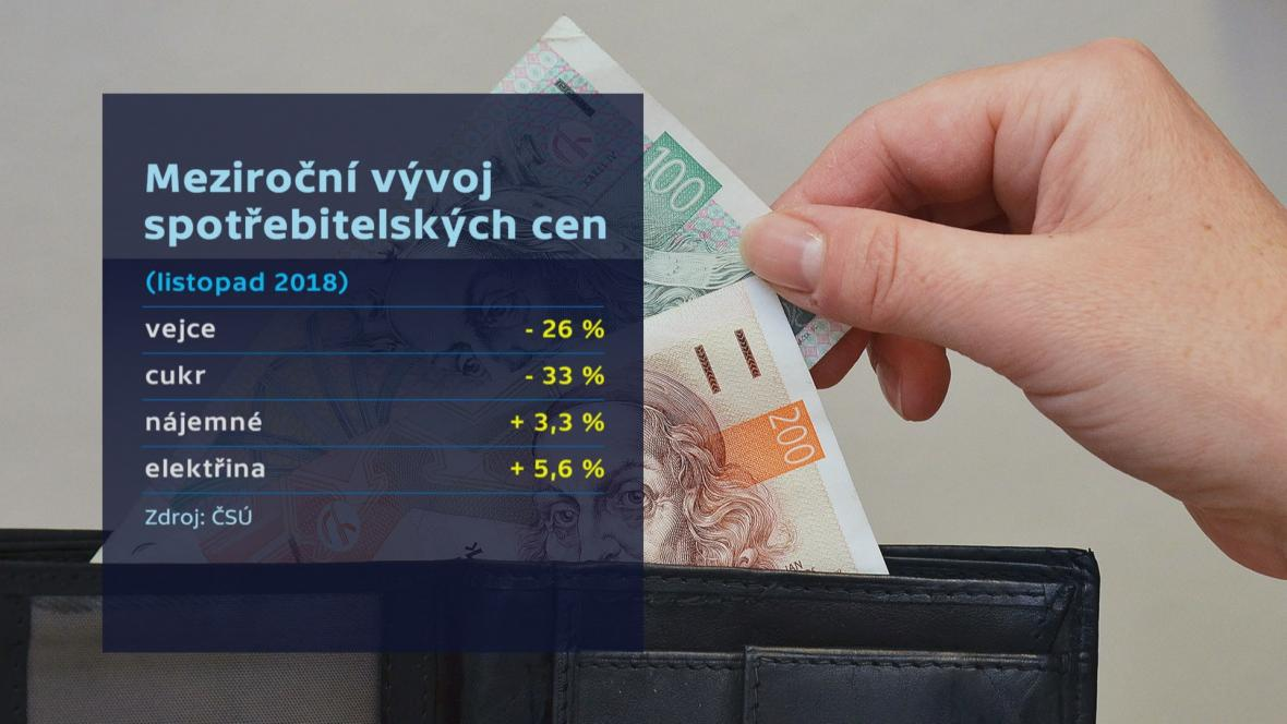 Meziroční vývoj spotřebitelských cen