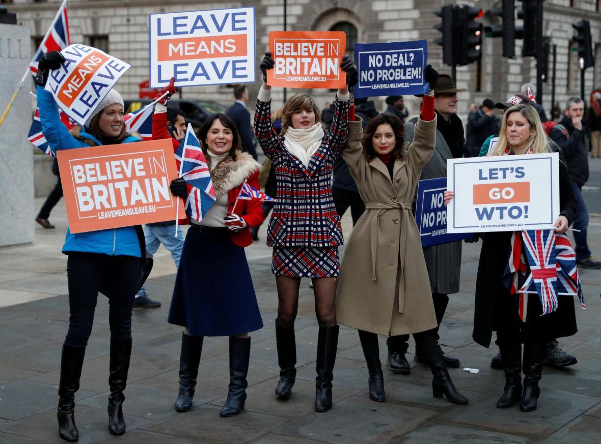 Podpůrkyně brexitu