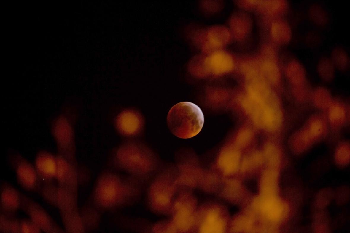 Zatmění Měsíce, Antverpy