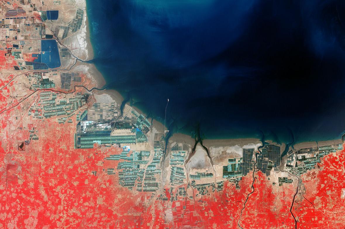 Akvakulturní zařízení v Pochajském zálivu roku 2000