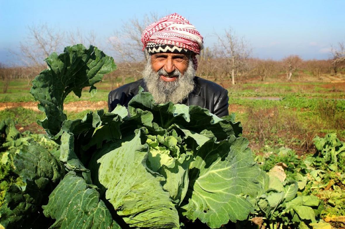 Farmář v Sýrii