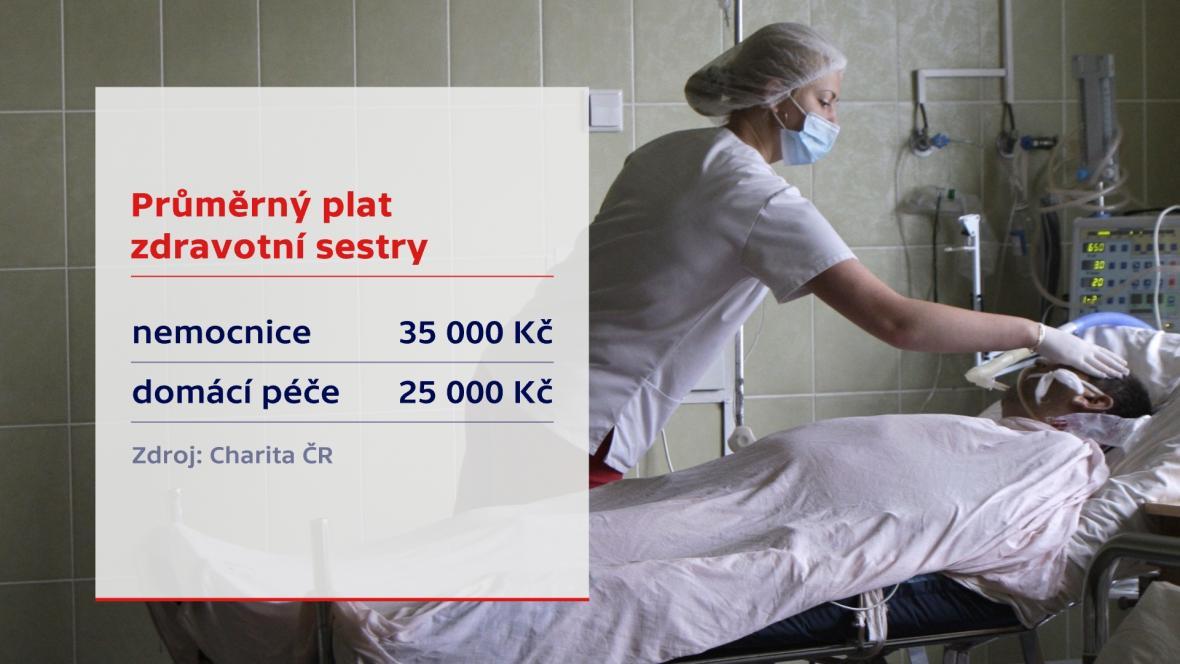 Průměrný plat zdravotní sestry
