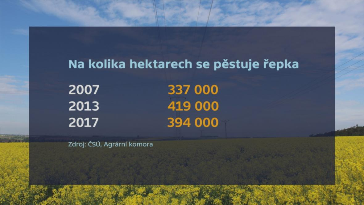 Pěstování řepky v ČR