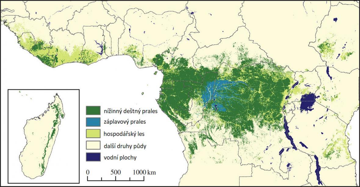 Les ve střední Africe