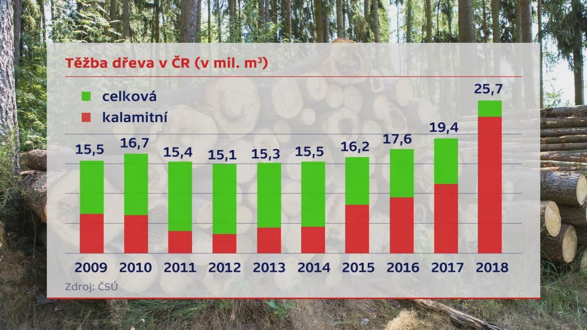 Těžba dřeva v ČR