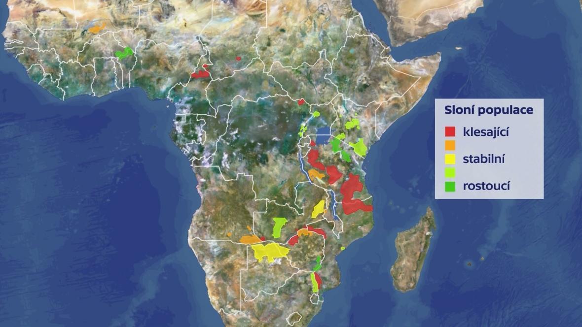 Populace slonů v Africe