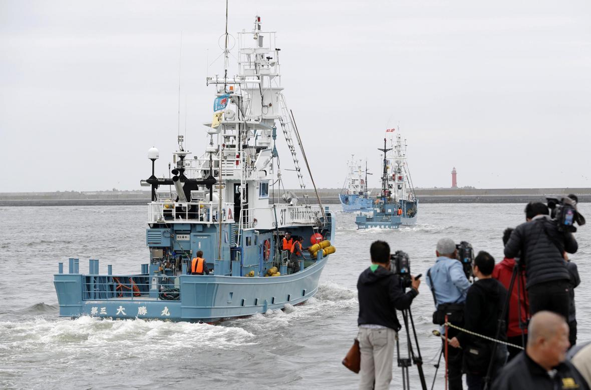 Japonské velrybářské lodě vypluly
