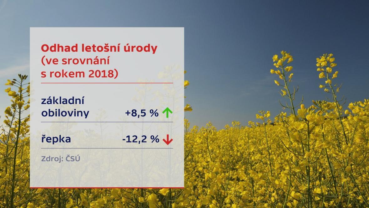 Odhad letošní úrody