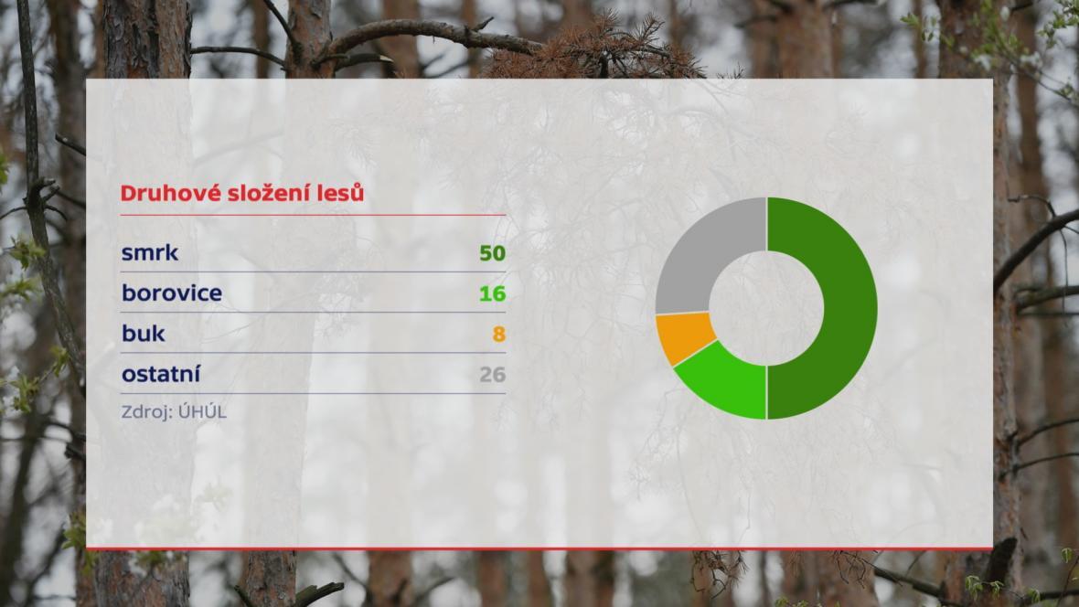 Druhové složení lesů