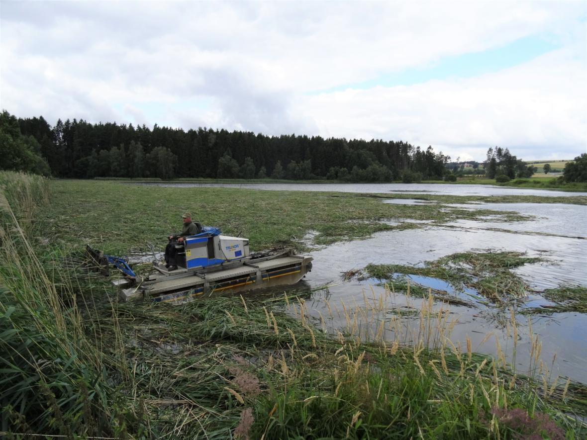 Sečení porostu u Pařezného rybníka na Žďársku skončilo tragédií