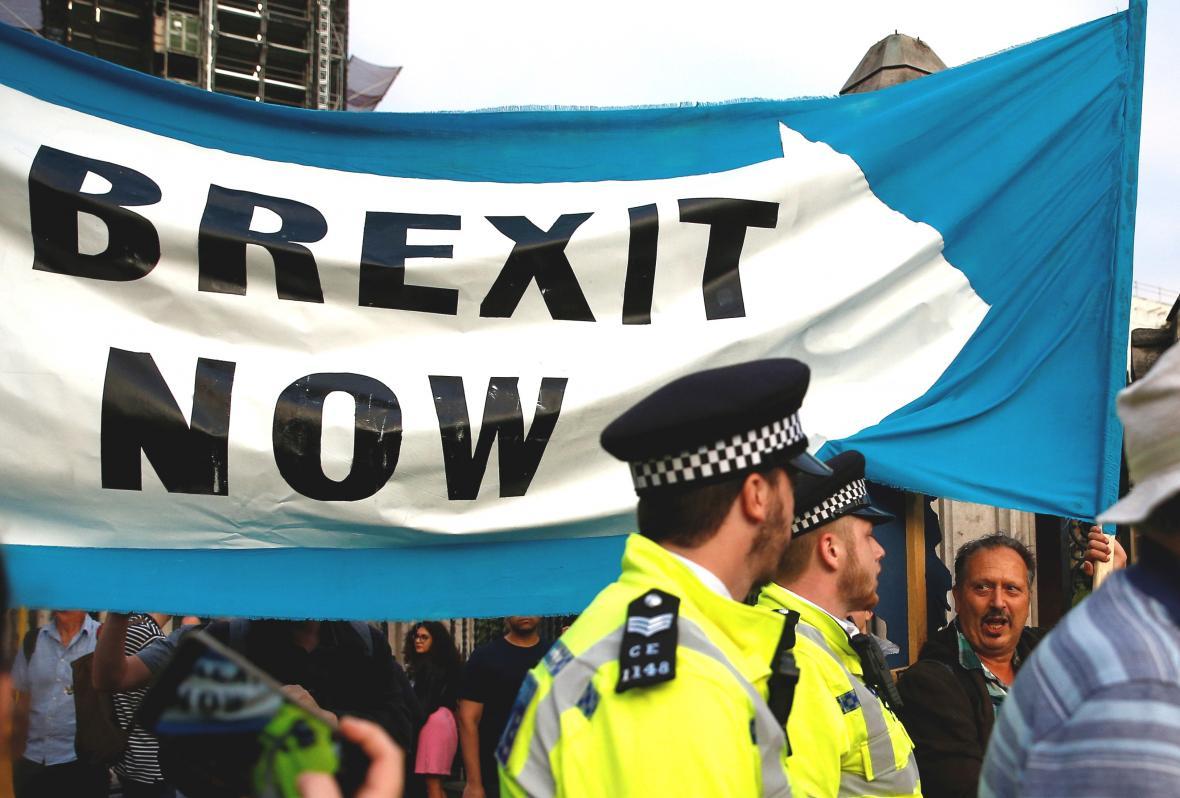 Demonstrace za rychlý brexit
