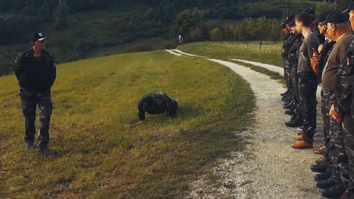 Slovinské dobrovolné hlídky
