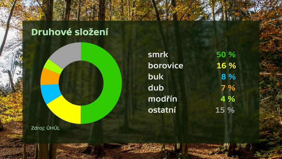 Druhové složení lesa
