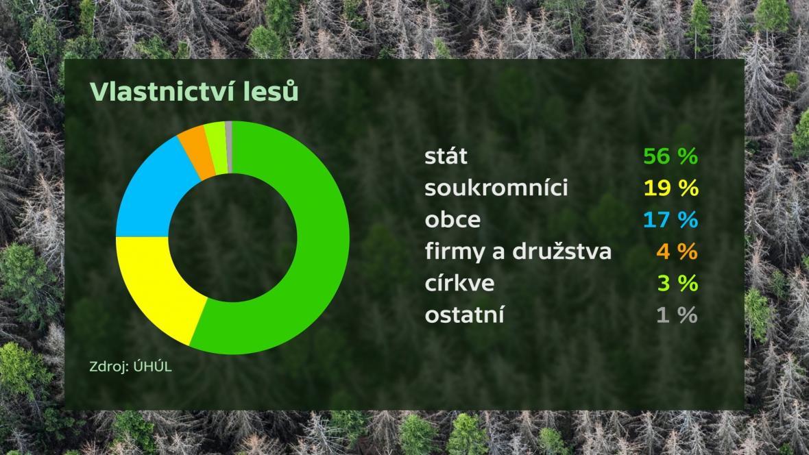 Vlastnictví lesů