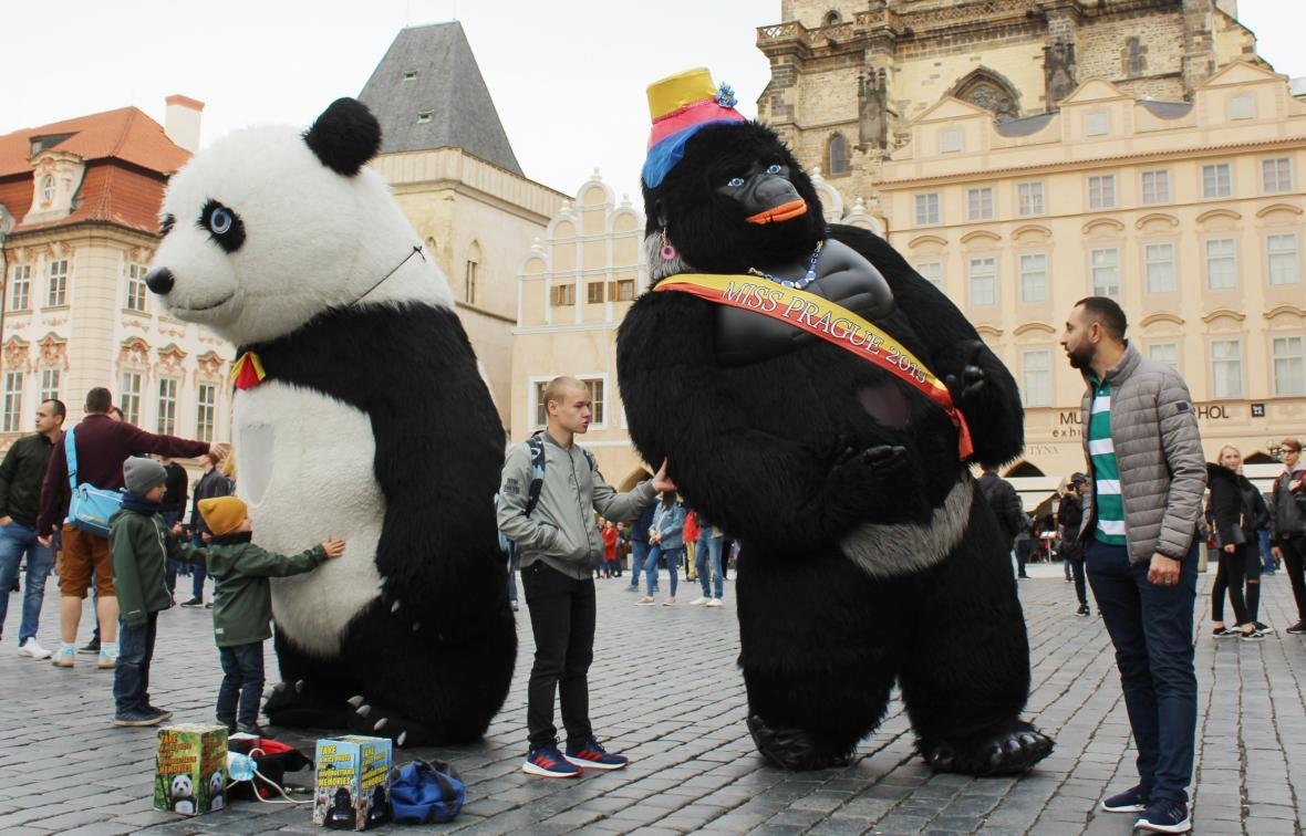 Lidé v obřích kostýmech zvířat vystupovali na pražském Staroměstském náměstí ještě v říjnu
