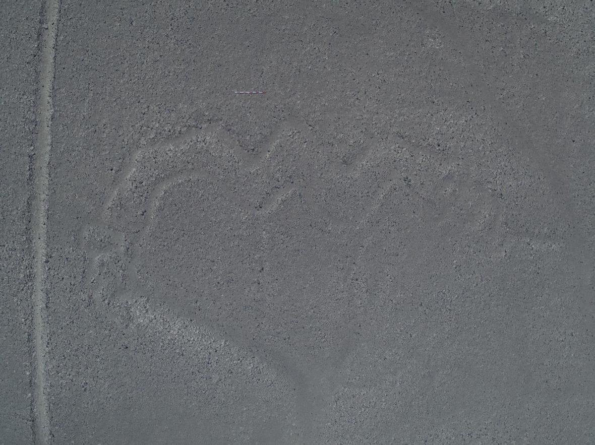Had požírající člověka na planině Nazca