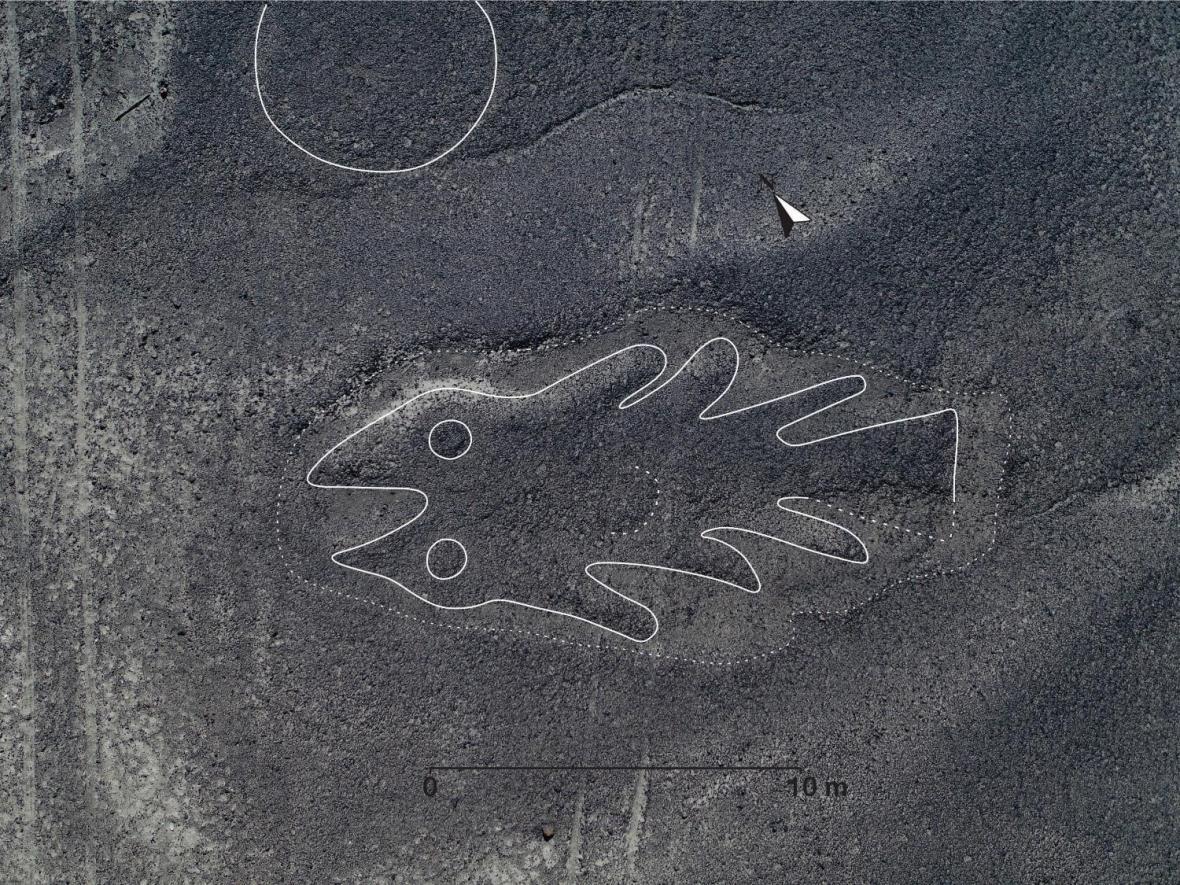Ryba na planině Nazca - vylepšená fotografie