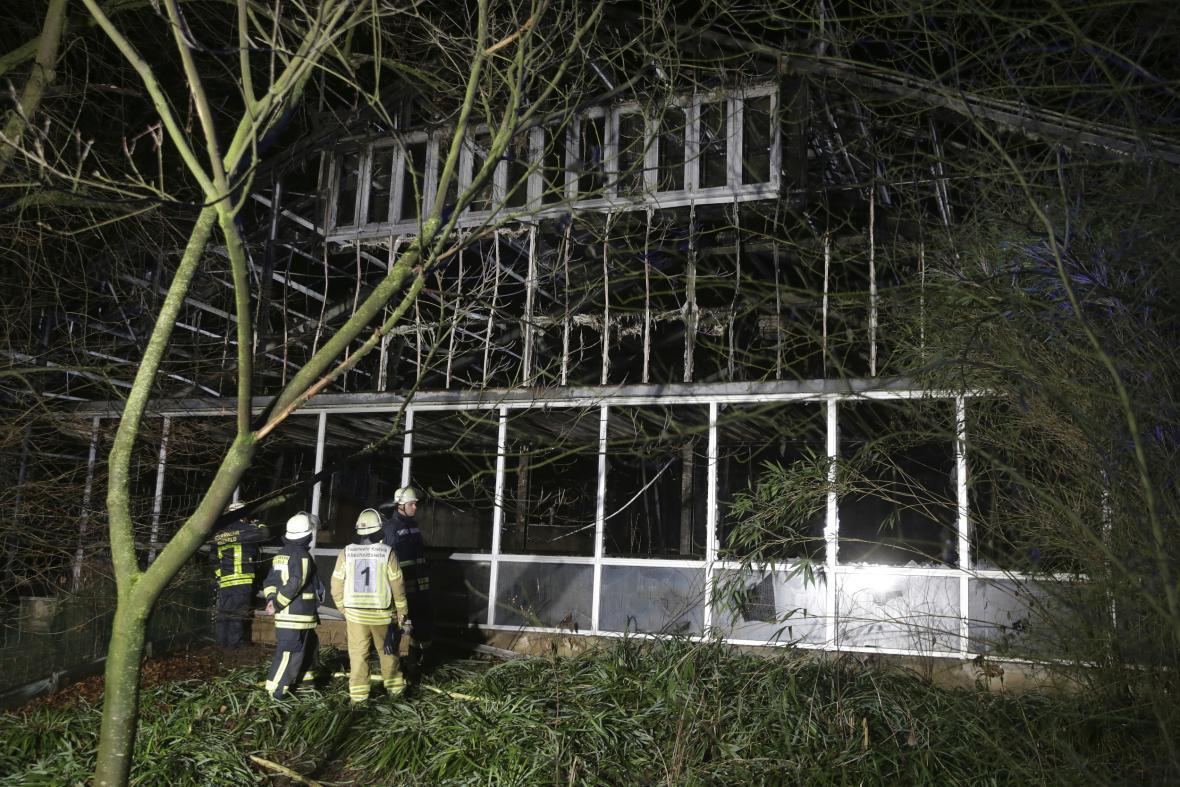 Vyhořelý pavilon opic v krefeldské zoo