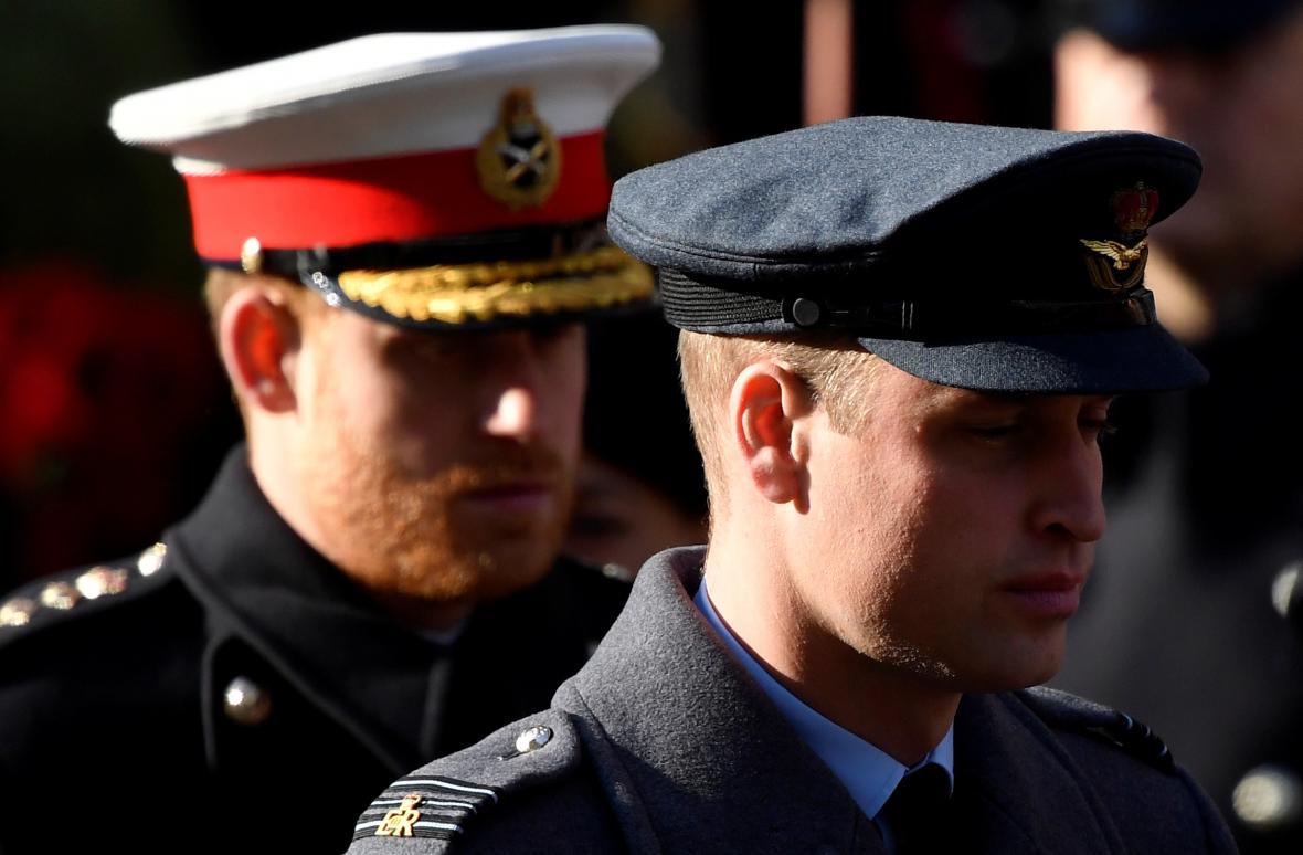 Princové William a Harry veřejně potvrdili, že se každý vydal jinou cestou