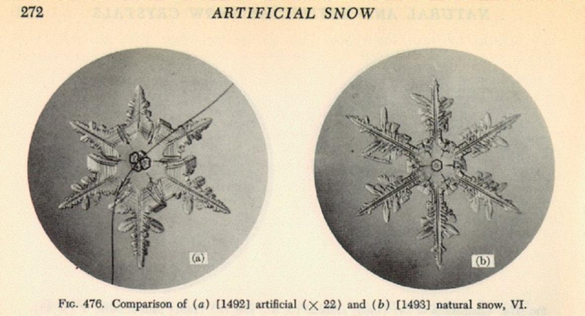 První obrázky sněhových vloček, které publikoval Ukičiro Nakaya v roce 1954. Vlevo je umělá sněhová vločka narůstající na králičím chlupu.