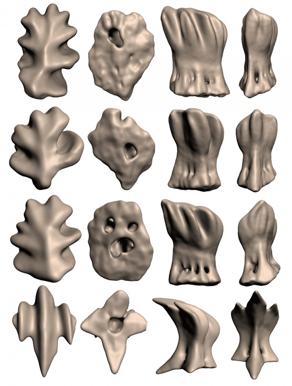 Čtyři rozdílné typy zubů ve žraločím oku z různých úhlů
