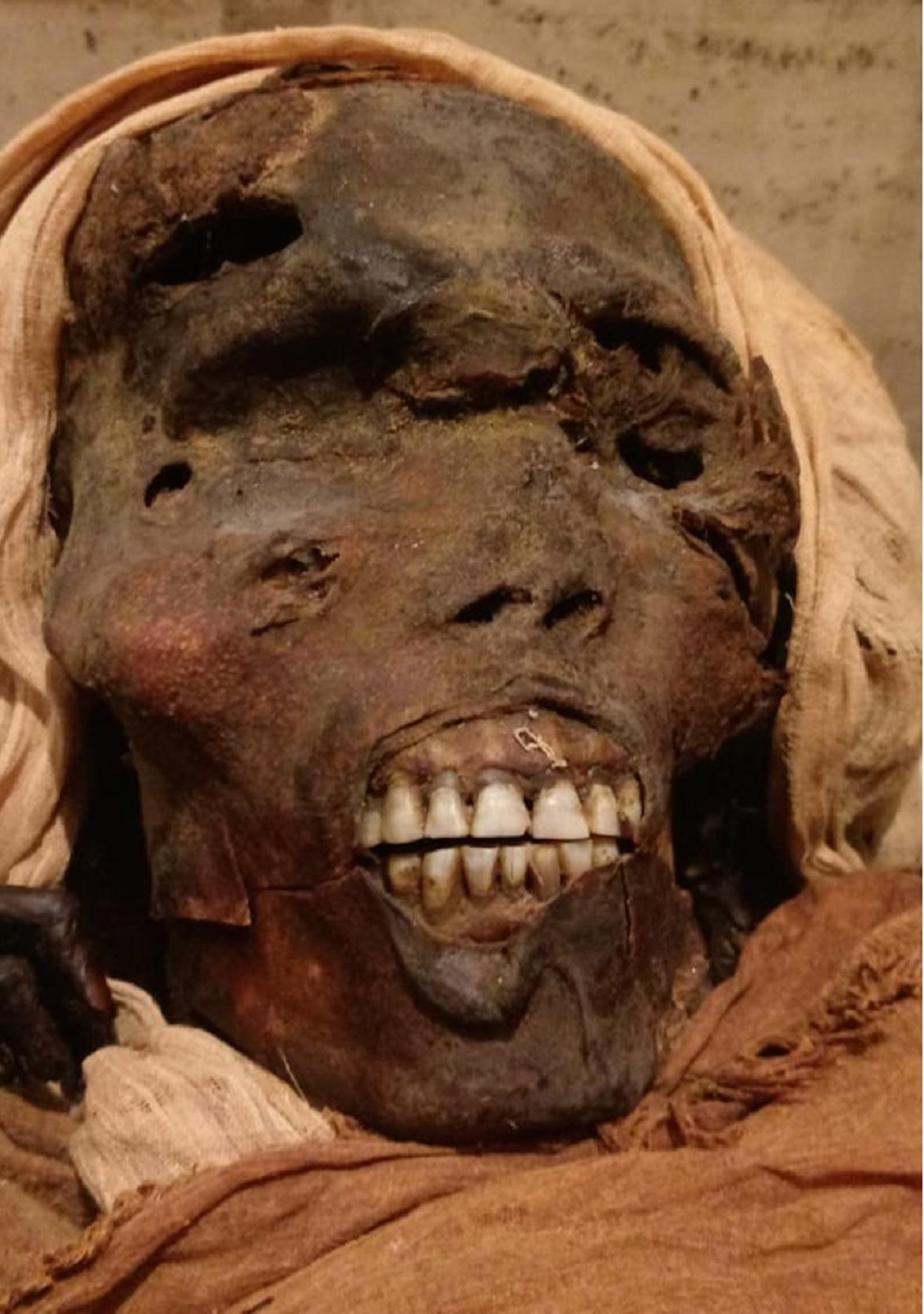 Hlava faraona Sekenenre Tao
