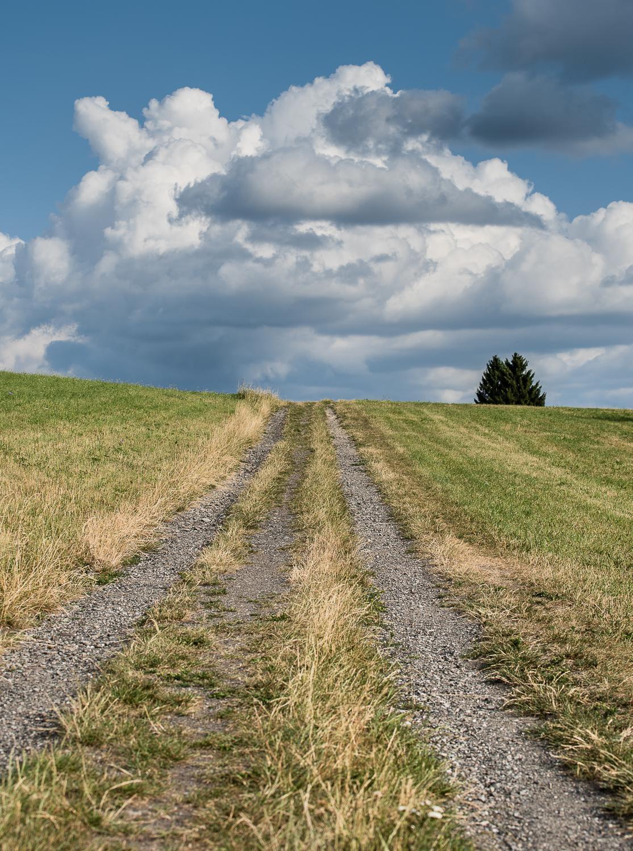 Krajina v CHKO Broumovsko - cesta na Machovské Končiny