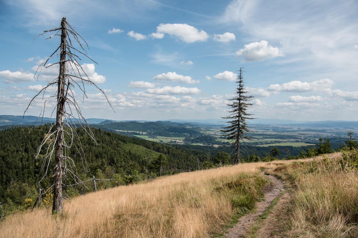 Na vrcholu Ruprechtického špičáku v Javořích horách