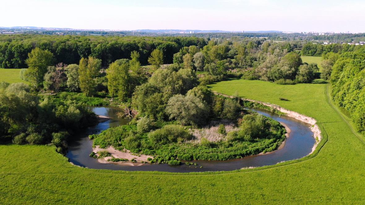 Meandr řeky Odry v Ostravě – Proskovicích