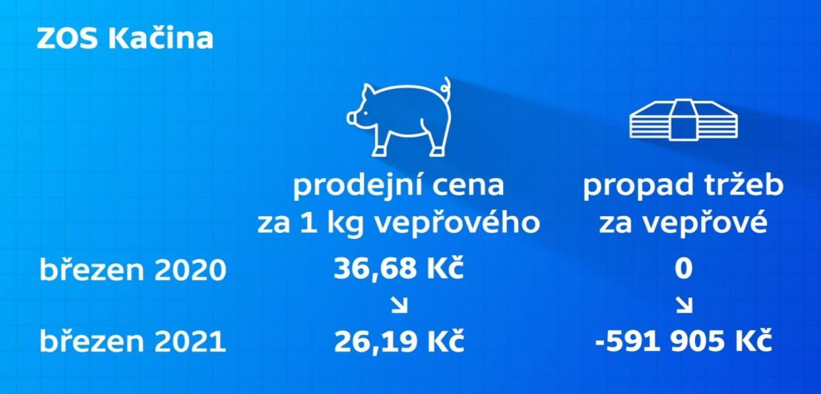 ZOS Kačina
