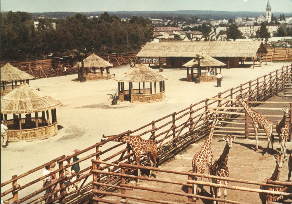 Africký kemp (rok 1969)