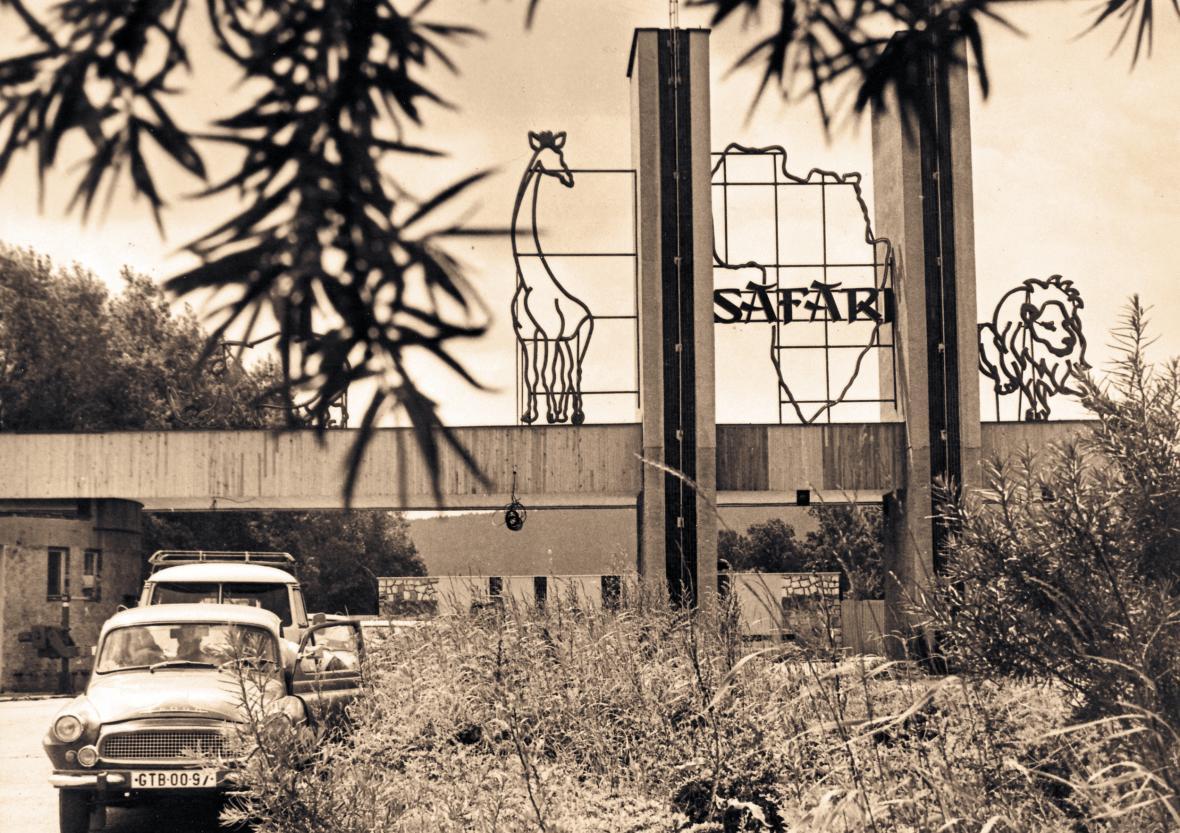 Vchod do zoo (1984)