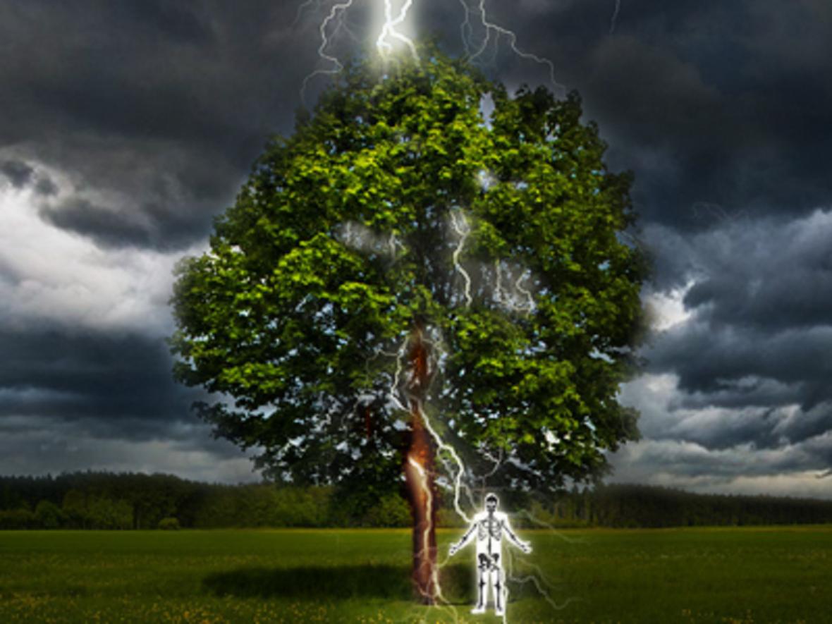 Při úkrytu pod stromem před deštěm za bouřky hrozí zásah vedlejším bleskem
